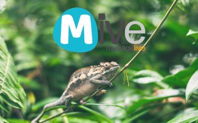 Mive, plataforma 360º para acelerar la transformación digital